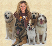 Pet sitter with dogs